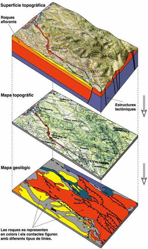 The geological map is the representation of the different types of rocks and contacts that emerge on the earth's surface on a topographic map